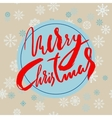 Beige christmas background with christmas red vector image