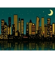 Cartoon night city vector image vector image