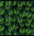 fir tree branches pattern christmas background vector image