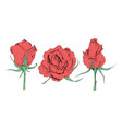 in form flowers roses vector image vector image