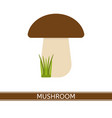 mushroom isolated vector image