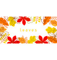 banner with stylized autumn foliage falling vector image vector image