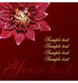 Chrysanthemum Floral Design vector image vector image
