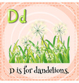 Flashcard letter D is for dandelions vector image vector image