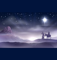 mary and joseph nativity christmas vector image vector image