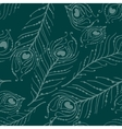 Seamless graphic pattern of peacock feathers vector image vector image