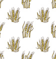 seamless wheat pattern vector image