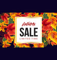 vivid poster with autumn sale promotion vector image vector image