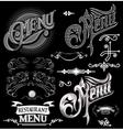 calligraphic elements for design label menu vector image