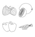 design of vegetable and fruit icon set of vector image
