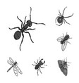 different kinds of insects monochrome icons in set vector image