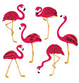 folk patterned flamingo icons set vector image