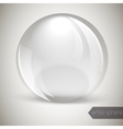 Glass glossy sphere vector image vector image