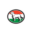 kuvasz dog hungarian flag oval retro vector image vector image