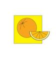 orange on yellow field vector image
