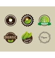 organic food product vector image