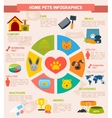 Pets infographic set vector image