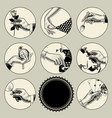 set of round images in vintage engraving style vector image