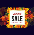 trendy design vivid banner with sale vector image
