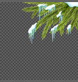 border with realistic firtree snow and icicles vector image