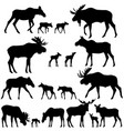 collection of silhouettes of mooses vector image vector image