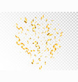 confetti gold explosion on transparent backdrop vector image vector image