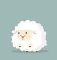 cute white little sheep vector image