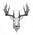 deer head on white vector image vector image