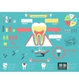 Dental infographic set vector image vector image