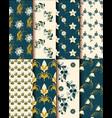 elegant set of flower patterns vector image