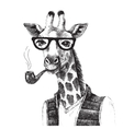 Hand drawn of giraffe hipster vector image vector image
