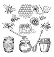 hand drawn pictures of honey products vector image vector image