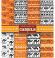 set seamless pattern with camels vector image vector image