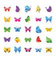 butterfly rare species flat icons vector image vector image
