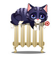 cute striped cat lying on a hot heating radiator vector image