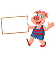 pig isolated holding wooden sign vector image