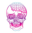 with a human skull and brains vector image vector image