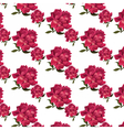 Rose flowers pattern background vector image