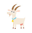 Farm goat with big eyes and horns wearing bell
