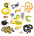 flat snakes collection isolted on shite vector image vector image