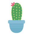 green catcti with flower in blue flowerpot vector image vector image