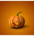 Halloween Pumpkin Jack Lantern vector image