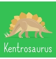 Kentrosaurus dinosaur colorful card for kids vector image vector image