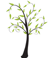 Lone tree with leaves vector image vector image