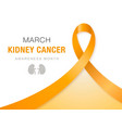 march - kidney cancer awareness month orange vector image