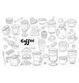 set of hand drawn different types of coffee on the vector image
