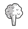 silhouette health broccoli vegetable icon vector image vector image