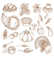 Thanksgiving day sketched symbols for greeting vector image