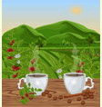 two cups of coffee with landscape view vector image vector image