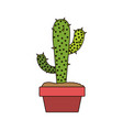 white background with cactus with two branches in vector image vector image